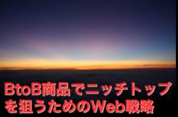 BtoB商品でニッチトップを狙う「第1回:Web戦略上のターゲット層はどこを狙う?」